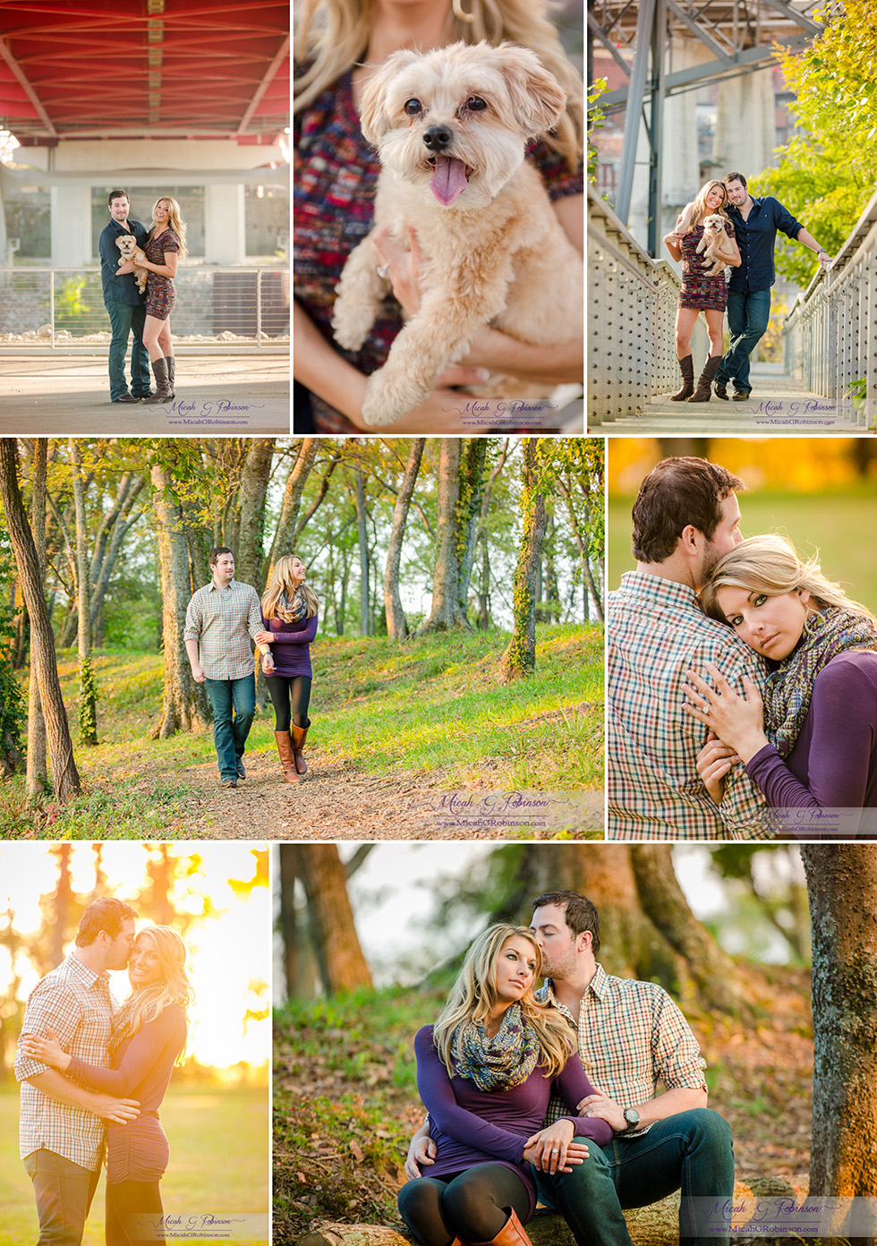 A walk in the wood engagement session